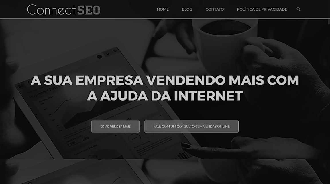 seo digital marketing company Balneário Camboriú